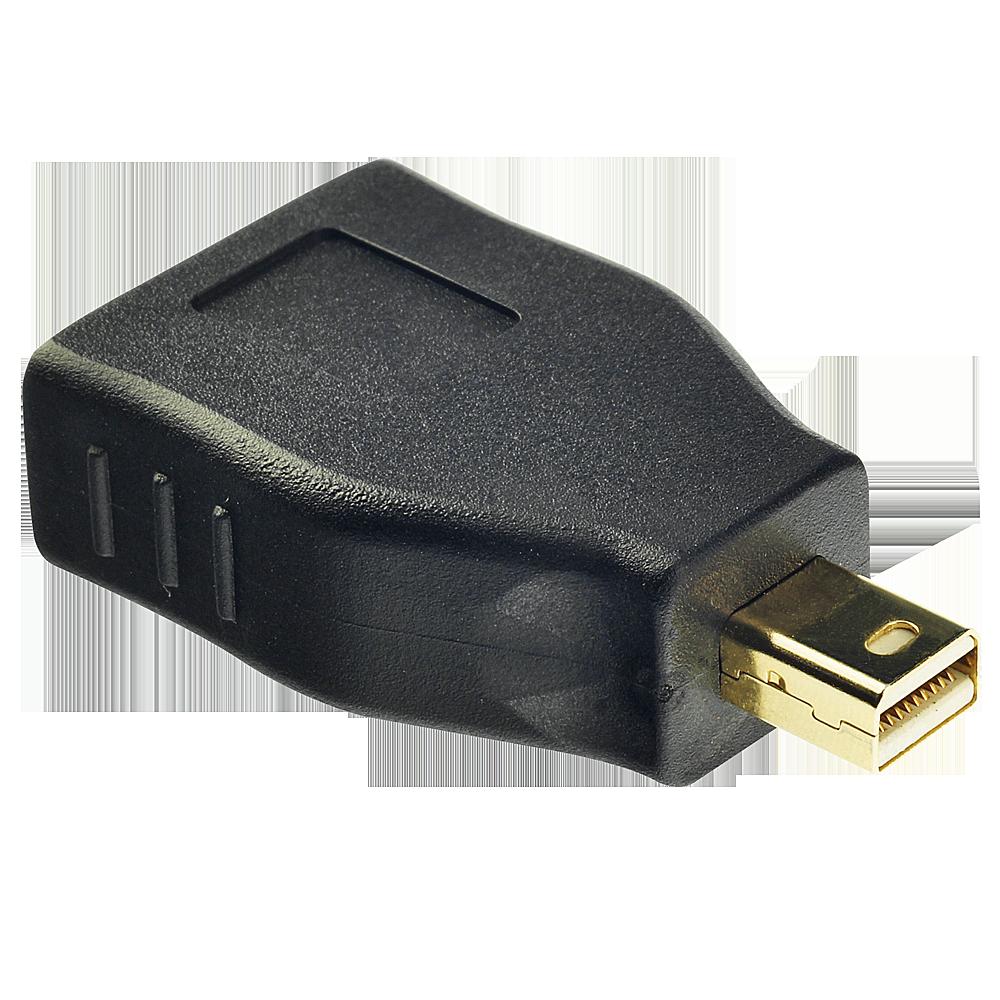 Mini DP an DP Adapter