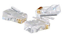 RJ45 Stecker UTP, Cat.5e, 10er Pack